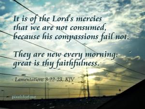 KJV Bible Verse on God's Faithfulness