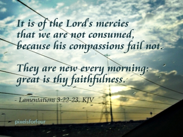 KJV Bible Verse on God's Faithfulness