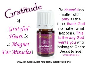 gratitude3-1