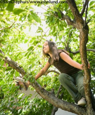 Girl-Climbing-Tree-picture-10000200057[1]
