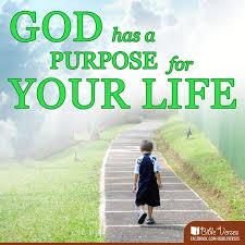 Gods purpose.jpg