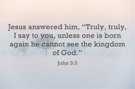 Jesus-answered-him-Truly